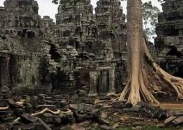 Angkor Special Tours Tour Tile 29