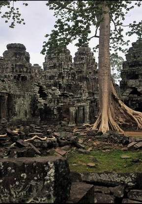 Angkor Special Tours Tour Tile 29
