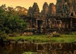 Angkor Special Tours Tour Tile 34