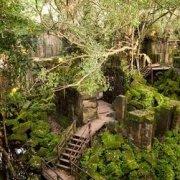 Angkor Special Tours Tour Tile 39
